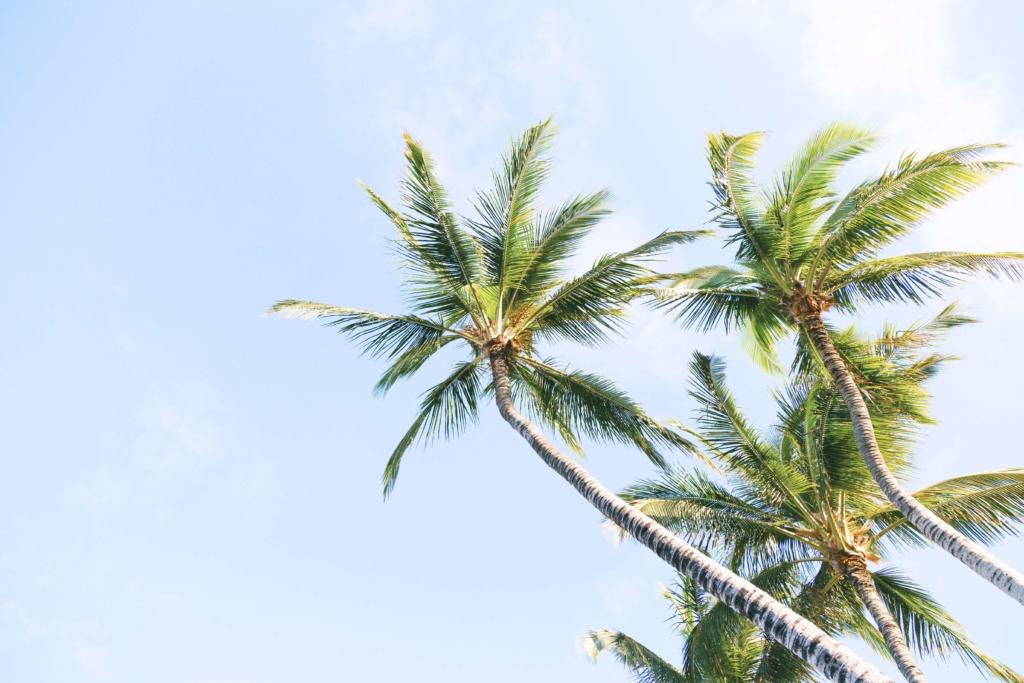 Hochzeitsreise Karibik