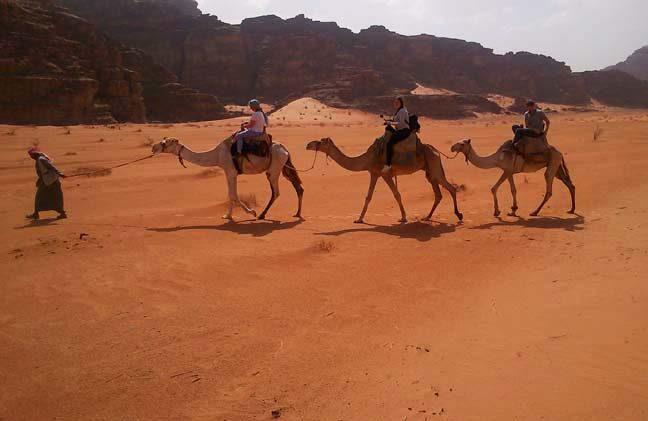 Wadi Rum Kameltour