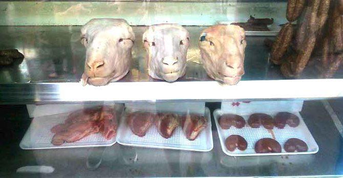 Schafsköpfe