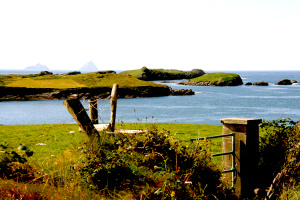 Valentia Island - Hintergrund Skelling Michael