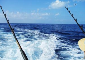 Hochseefischen auf Kuba