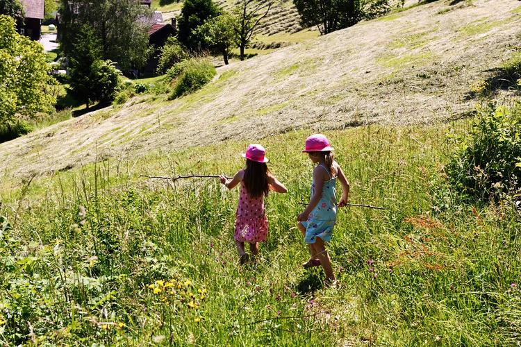 Familienurlaub in Österreich: Alm
