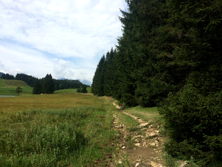 17-seewaldsee