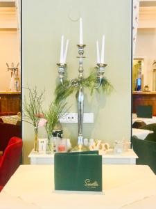 Hotel Seevilla Altaussee Brahms Salon