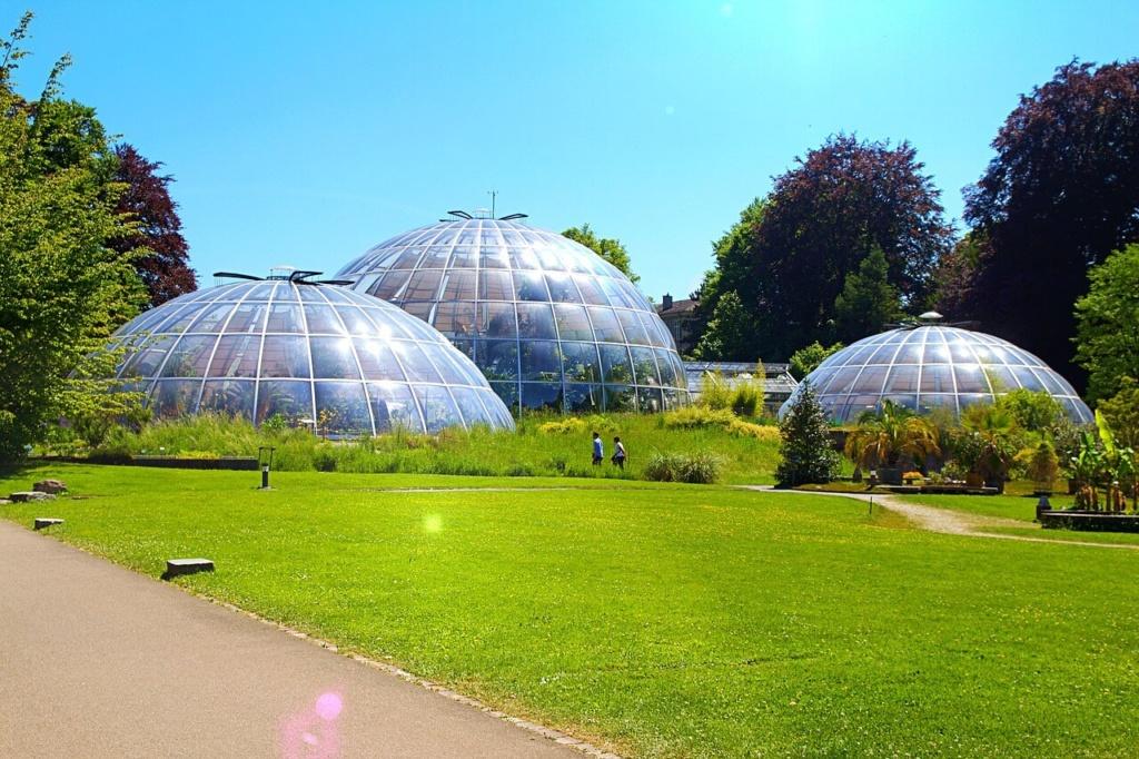 Zürich Sehenswürdigkeiten: Botanischer Garten
