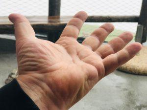"""Unsere """"5-fingers"""" Ansicht"""