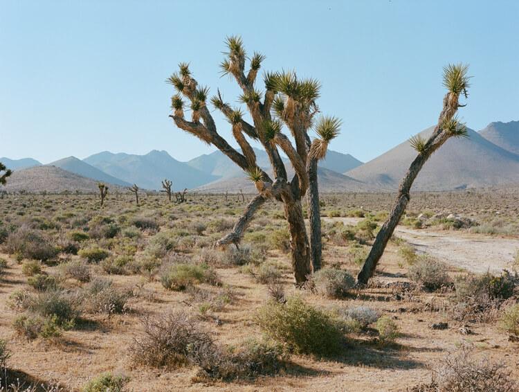 Sehenswürdigkeiten Nevada