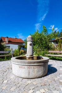 Hildegard von Bingen Garten