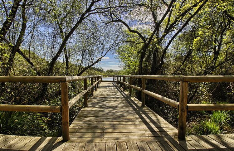 Andalusien Sehenswürdigkeiten Donana Nationalpark
