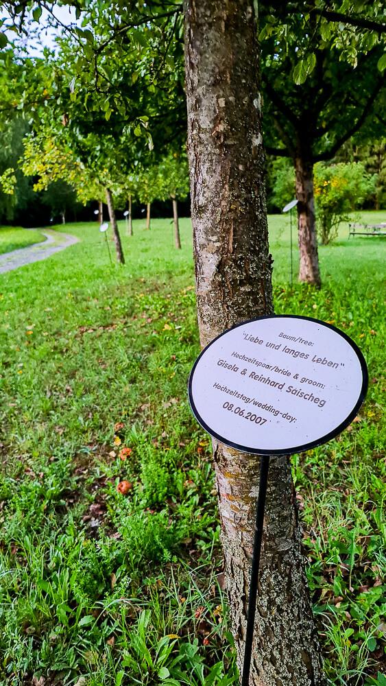Lebensbundbäume Bad Blumau