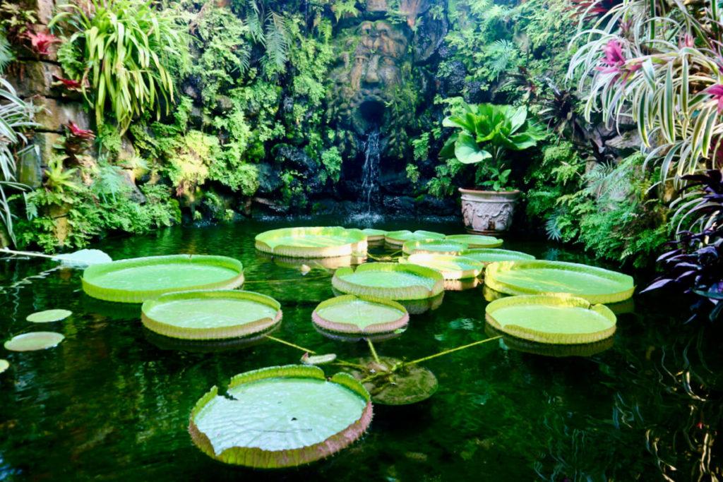 Giardini La Mortella auf Ischia
