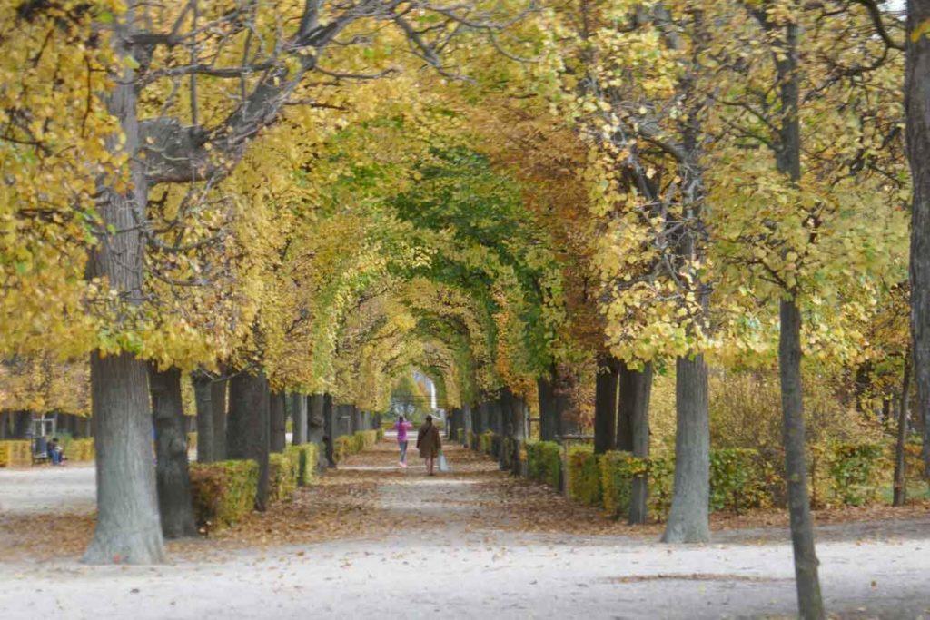 Die schönsten Gärten der Welt - Schönbrunn in Wien